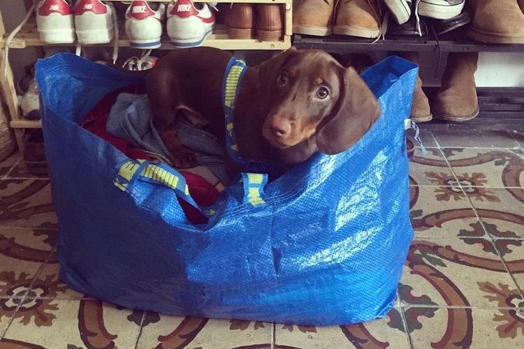 IKEA niebieska torba