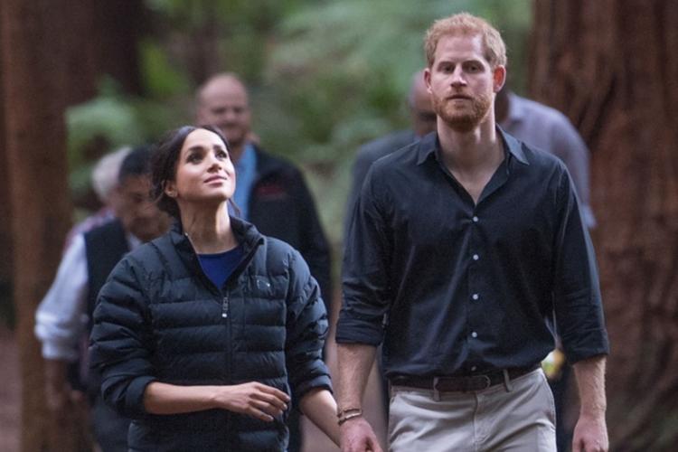 Księżna Meghan w kurtce księcia Harry'ego i książę Harry w koszuli w lesie podczas wizyty w Nowej Zalandii