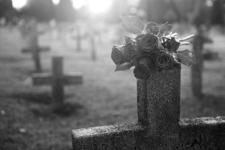 Róże położone na kamiennym nagrobku w kształcie krzyża na cmentarzu