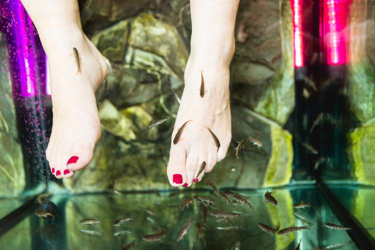 Poszła na rybi pedicure i straciła wszystkie paznokcie. Sanepid ostrzega: to niebezpieczne!