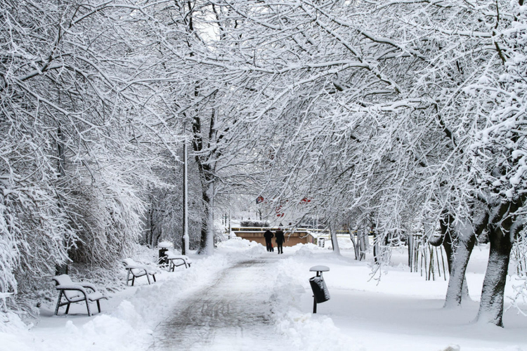 Śnieg w maju. Na Warmii i Mazurach temperatura poniżej zera ...