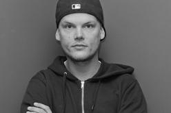 DJ Avicii DJ Avicii