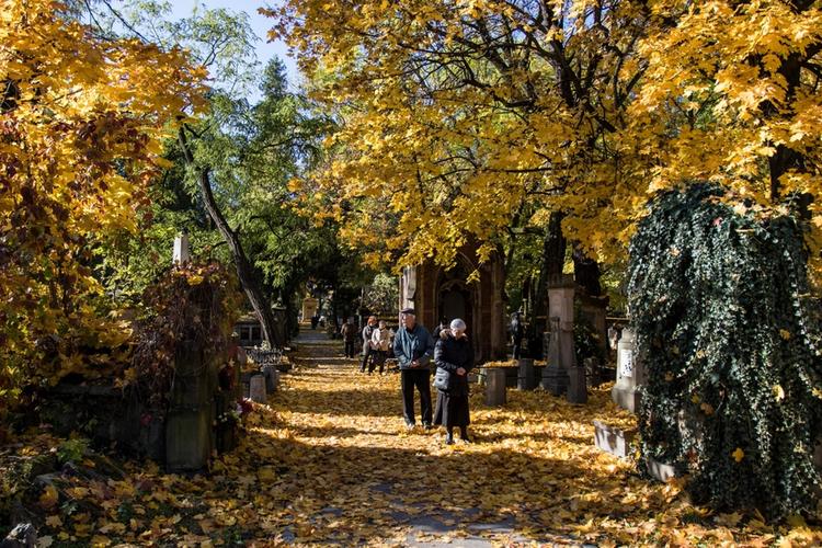 cmentarz w słońcu, ładna pogoda w dniu Wszystkich Świętych